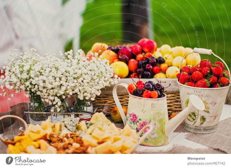 Fall Food Cheese Vegetable Fruit Dessert Candy Buffet Brunch Picnic Organic produce Vegetarian diet Nature Blossom Garden Park Fresh Healthy Multicoloured