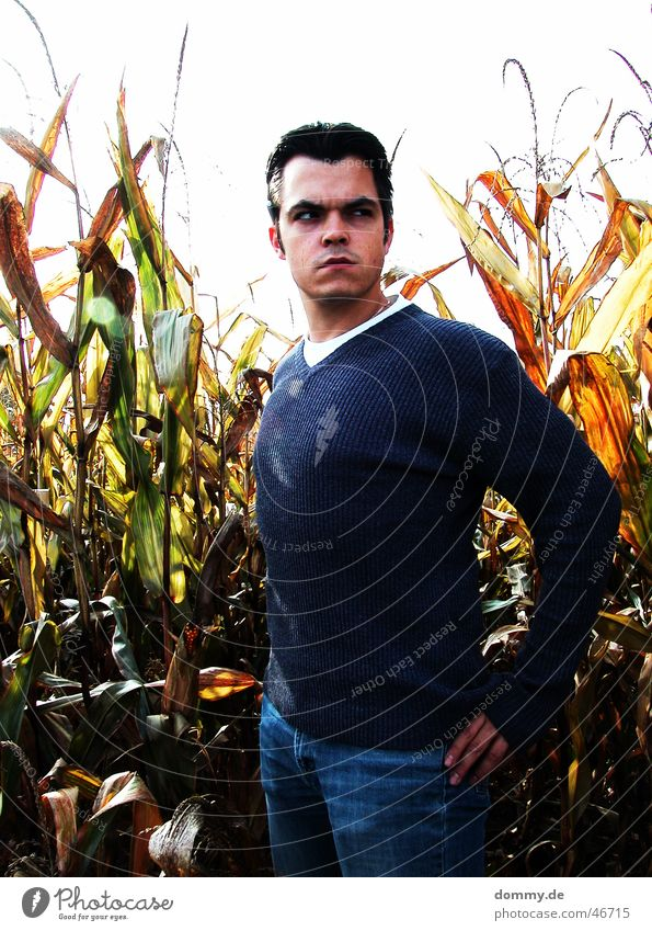 Man Eyes Hair and hairstyles Mouth Field Nose T-shirt Stand Ear Farmer Sweater Evil Maize Grain Ferocious Imply