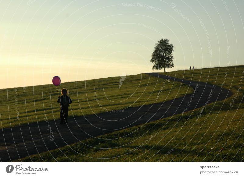 Child with balloon Silhouette Tree Balloon Nature