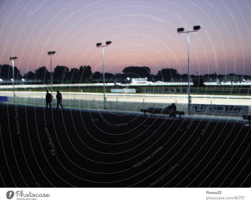 trotting track Twilight Sporting event Racecourse Floodlight