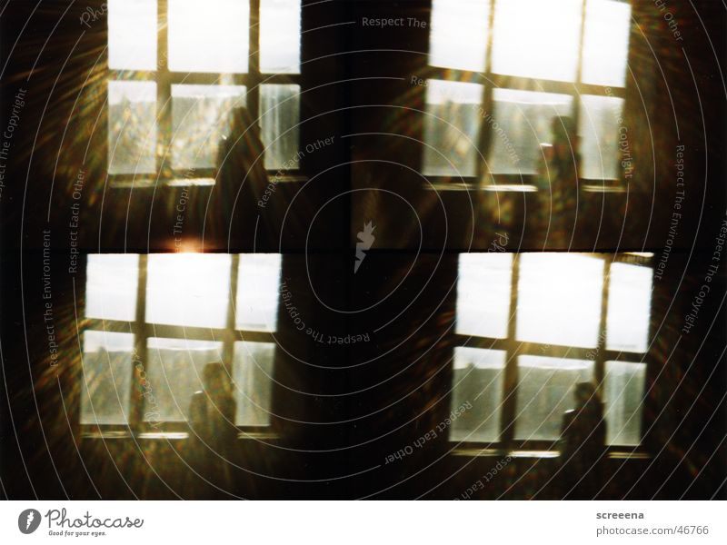 Woman Human being Sun Dark Window Building Warmth Bright Industrial Photography Stand