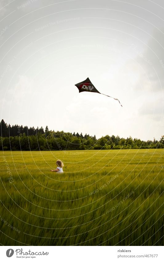 dragon weather!! Kite kites rise Feminine Child Girl Infancy 1 Human being 3 - 8 years Environment Nature Summer Autumn Field Walking Running Free Happiness