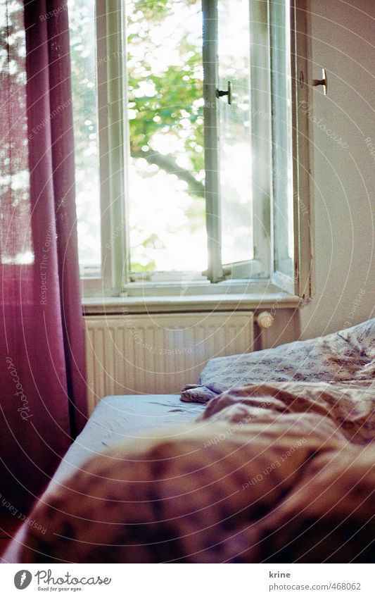 In the morning Flat (apartment) Bed Room Bedroom Window Relaxation Sleep Dream Esthetic Happy Bright Positive Retro Beautiful Warmth Feminine Soft Violet