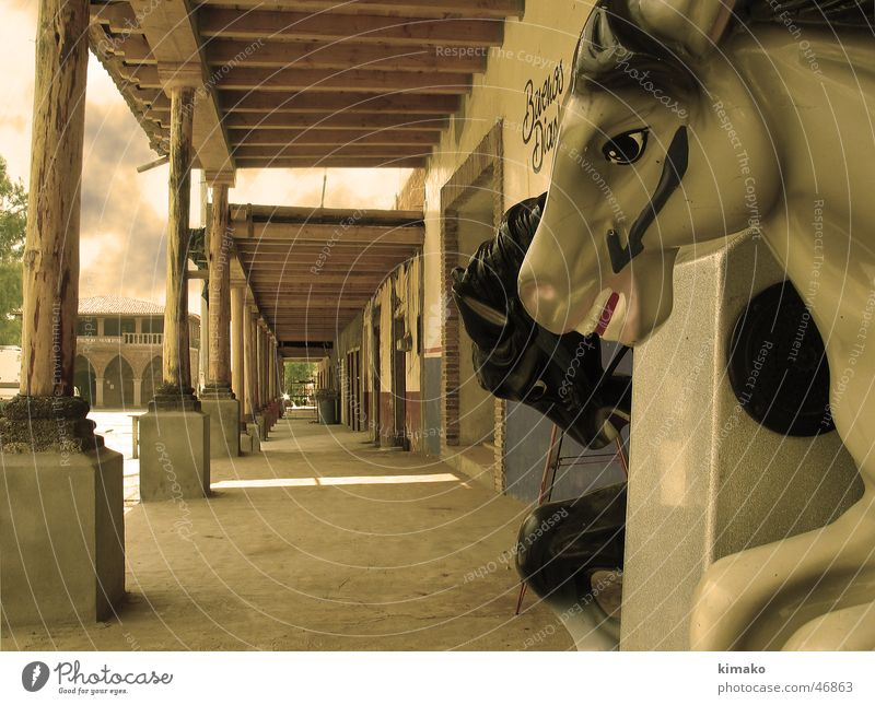 Old Horse Toys Americas Mexico Sepia