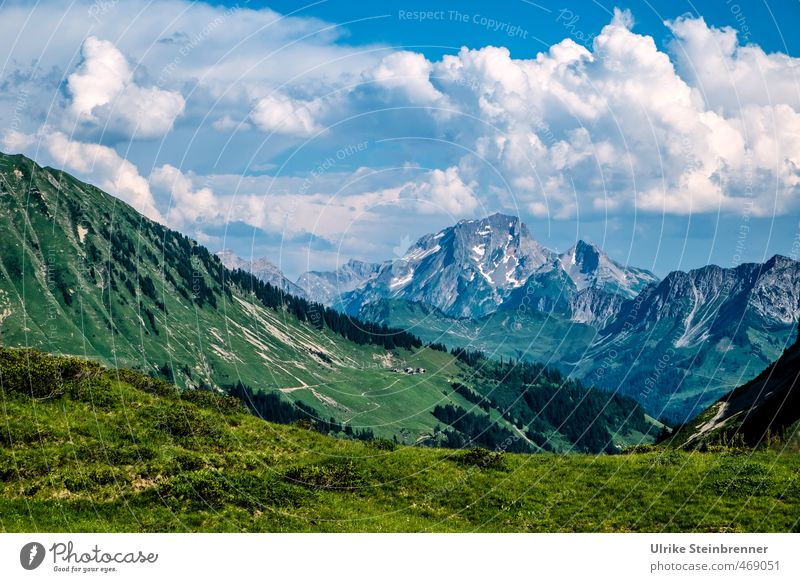 Mountain summer 2 Vacation & Travel Tourism Hiking Environment Nature Landscape Sky Clouds Summer Beautiful weather Tree Grass Meadow Rock Alps