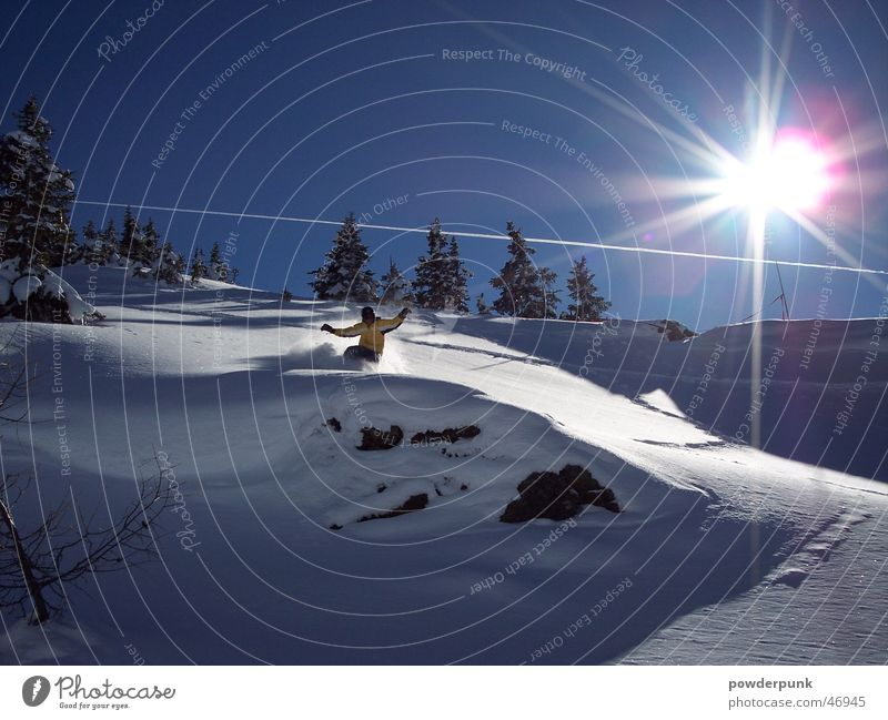 Sun Winter Snow Sports Action Downward Snowscape Coniferous trees Winter vacation Snow layer Snowboarding Spirited Winter mood Snowboarder Deep snow Powder snow