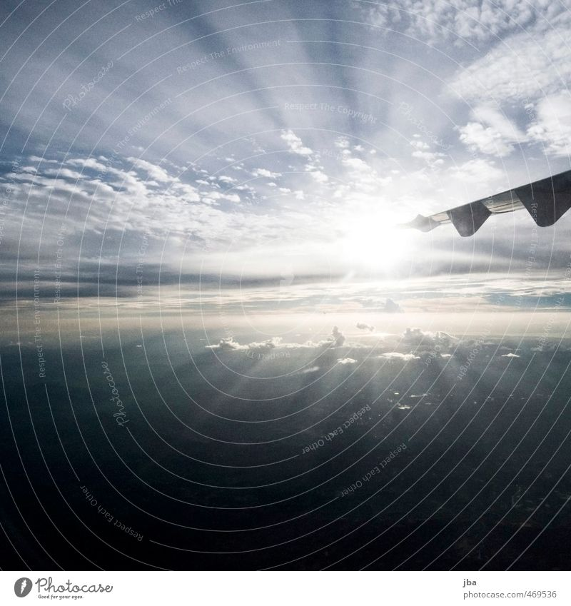 Sky Vacation & Travel Blue Summer Sun Far-off places Bright Air Flying Tourism Aviation Airplane Wing Anticipation Passenger traffic Nerviness