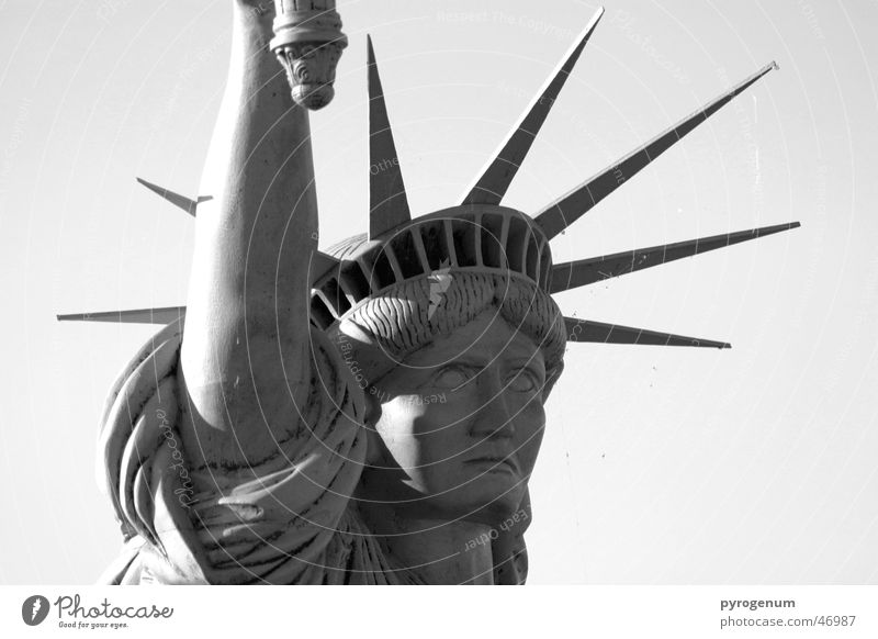 How free can a statue be? Statue Americas Landmark Famousness Black White Free Stone Metal Tall Head Prongs Statue of Liberty