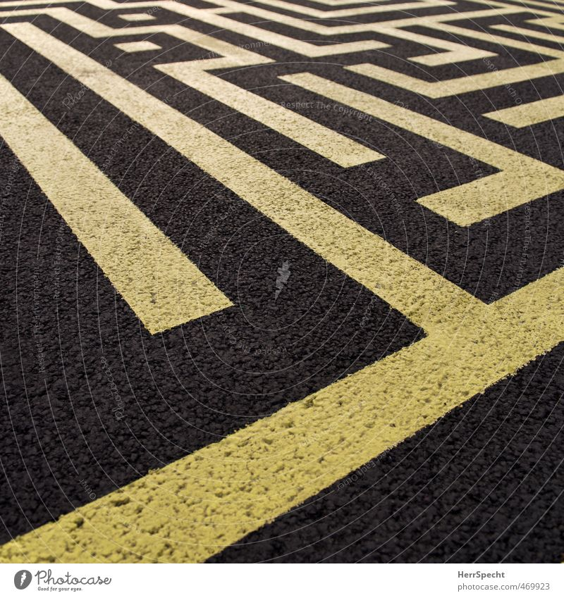 Zebra crossings for creative people Street Sharp-edged Yellow Black Ground markings Stripe Asphalt Chaos Maze Labyrinth Playing Colour photo Exterior shot
