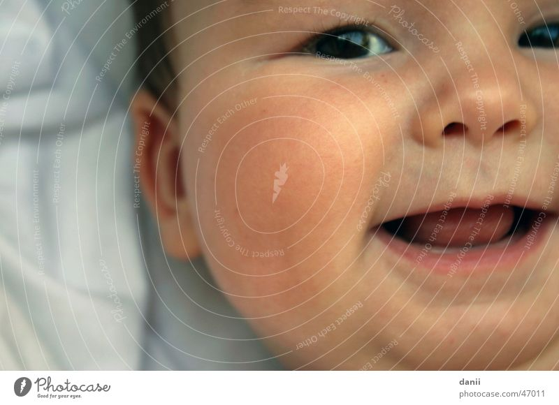Human being Child Face Eyes Small Laughter Baby Nose Happiness