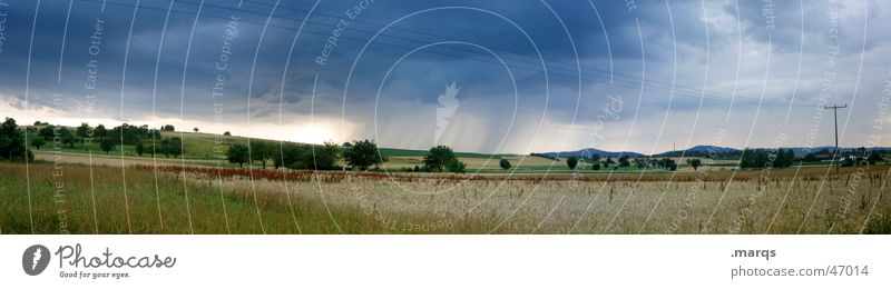 Nature Tree Summer Clouds Meadow Rain Landscape Field Large Threat Gale Pasture Storm Panorama (Format) Turnaround Precipitation