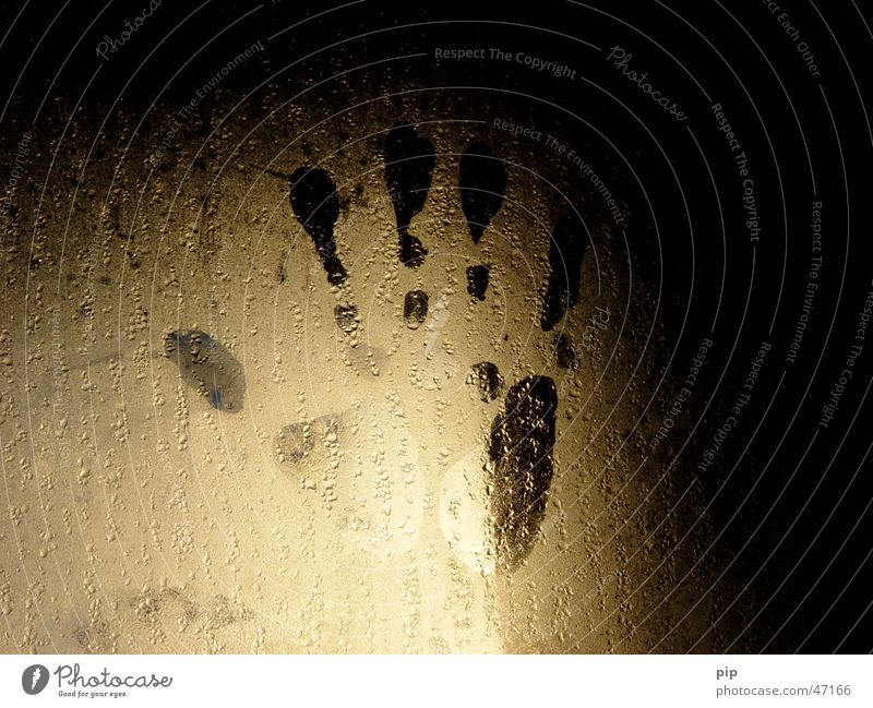 handprint Hand Palm of the hand Fingers Fingerprint Thumb Drops of water Wet Damp Pane Window Dark Light Signs of life Loneliness Fear Panic Grief Distress