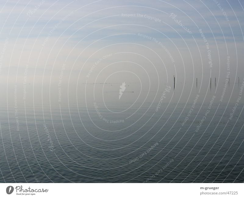 Lake Constance in the haze Fog Calm Loneliness Water kressborn