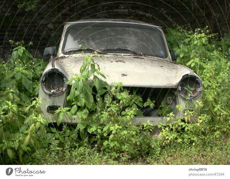 Nature strikes back Trabbi Sachsenring Transience trabbi nature Technology Old