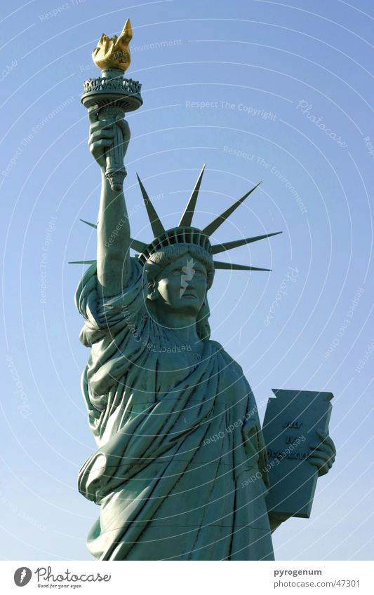 Freedom Ice Free Statue Americas Landmark Statue of Liberty New York City Torch