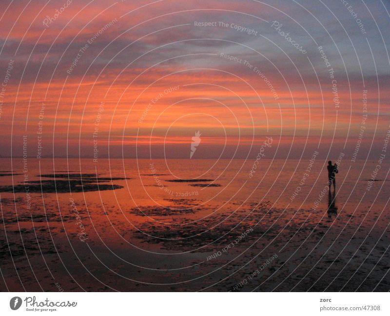 Ocean Beach Calm Loneliness Far-off places North Sea