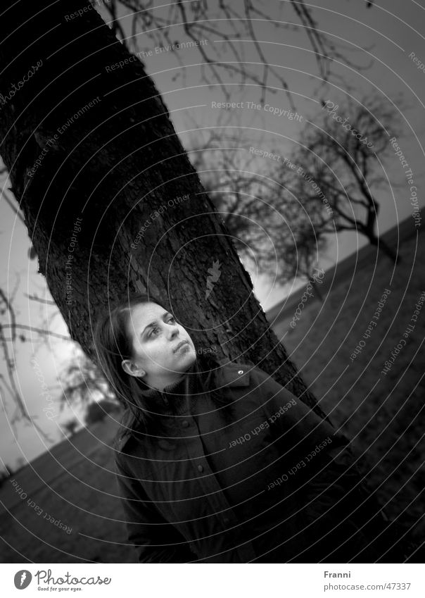 Under the trees Portrait photograph Tree Woman Serene Harmonious Meadow Field Nature Autumn Winter Moody Calm Exterior shot Idyll Black & white photo erhloung