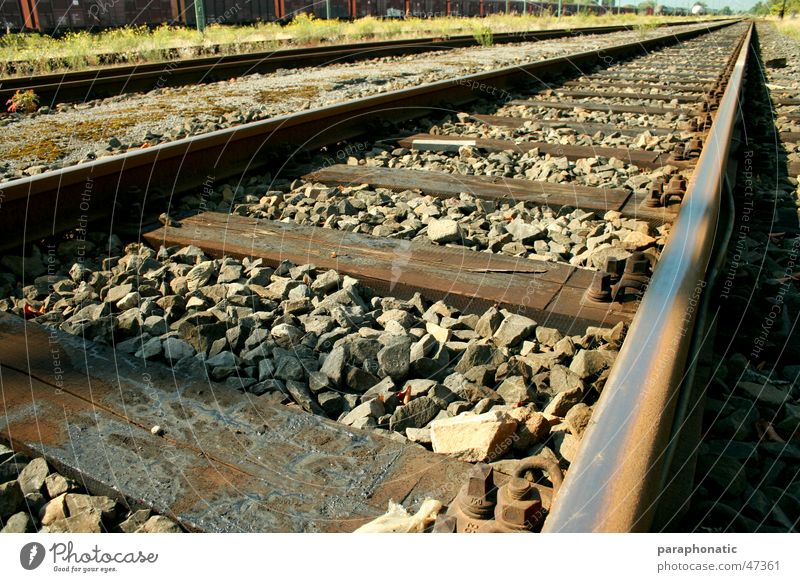 Long Way Home Railroad tracks Far-off places Old Style Wood Wooden board Pebble Stone Grass Meadow Bushes Extensive Vacation & Travel Depart Exterior shot db