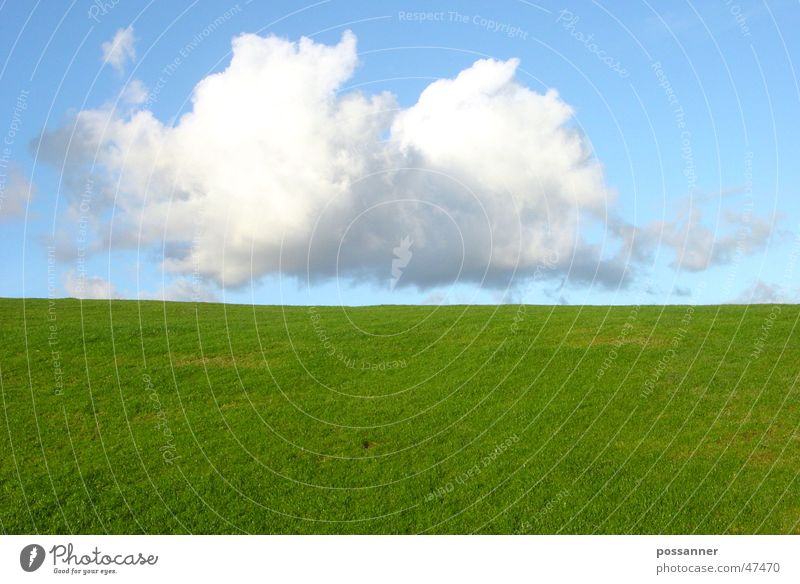 soft landing Clouds Grass Hill Landscape Sky
