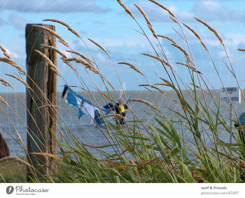 Wind Kiting Funsport Surfing