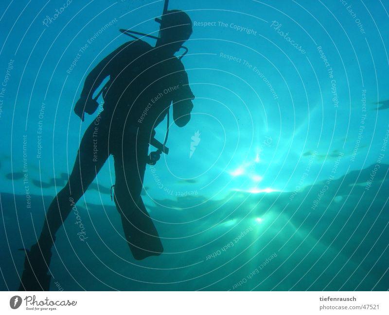Marsa Shagra - Marcel Dive Egypt Back-light Sun Water Silhouette