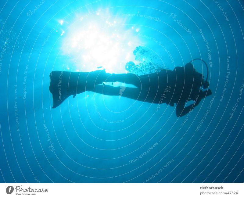 Marsa Shagra - bubbles Dive Egypt Back-light Sun Water Silhouette Blow