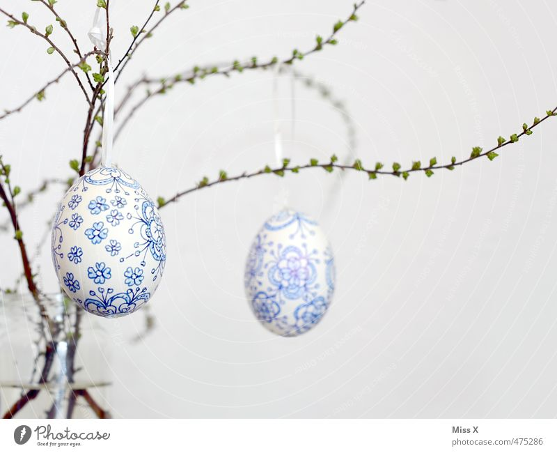 Easter egg Feasts & Celebrations Hang Blue White Blue-white Delicate Fragile Branch Twig Bud Leaf bud Painted Decoration Easter decoration Flowery pattern