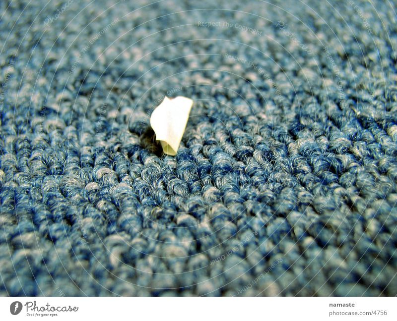 snippets Things paper carpet