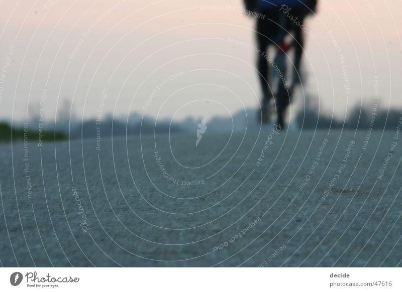 riding away Bicycle Sunset New start Goodbye Future Past Snapshot Lanes & trails End Joy Freedom Landscape
