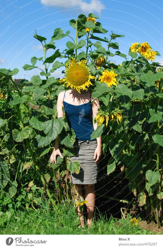 in the field Renewable energy Human being Young woman Youth (Young adults) Head 1 18 - 30 years Adults Summer Autumn Flower Blossom Field Blossoming Fragrance