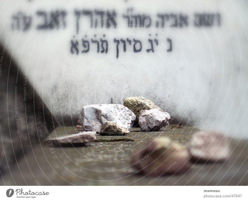 Stone Vienna Cemetery Inscription Tombstone Judaism Central cemetery