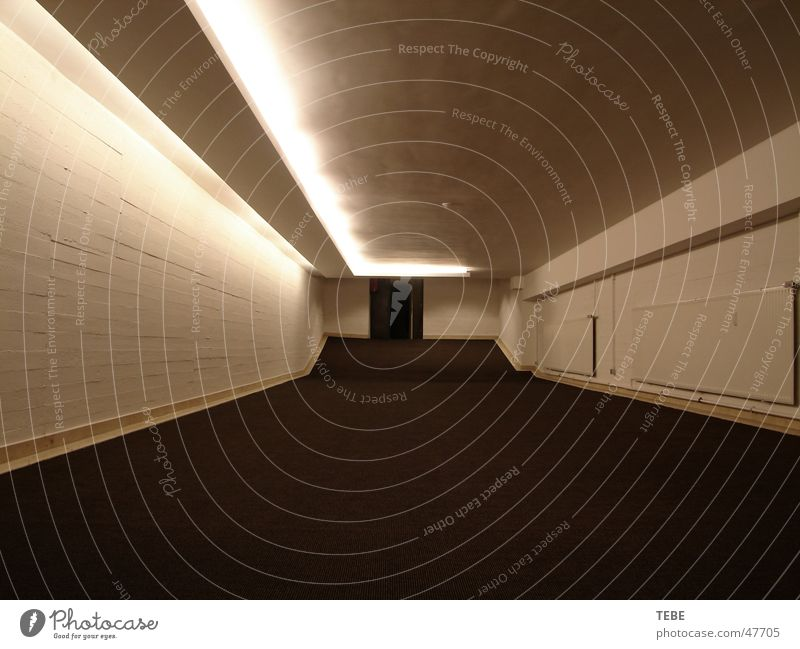 The passage Cellar Dark Passage Catacomb Narrow Way out Interior shot Freedom Architecture