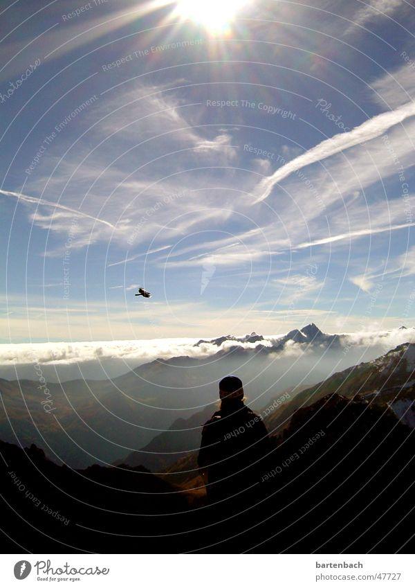 Clouds Mountain Bird Peak