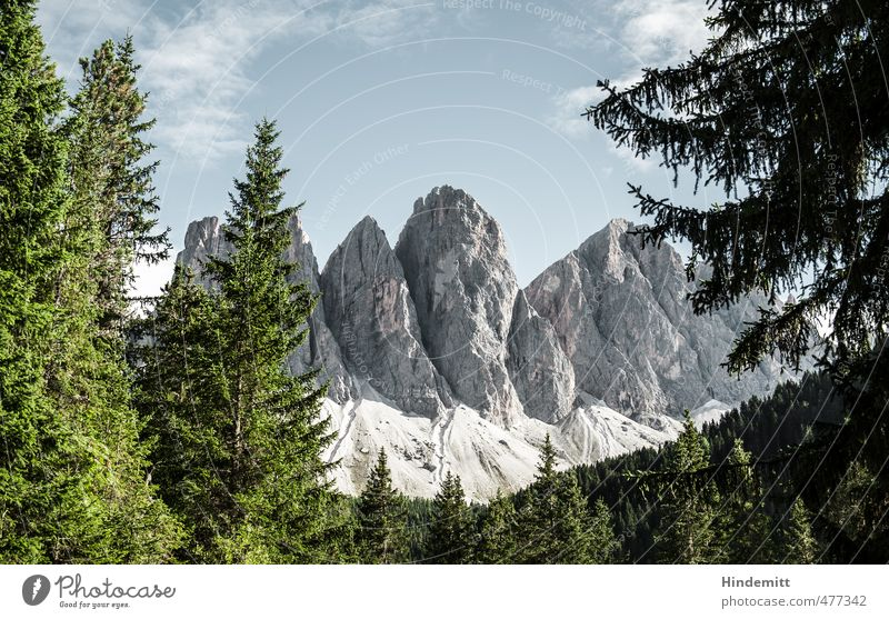 Geisler [landscape] Elements Earth Air Sky Clouds Summer Beautiful weather Tree Forest Hill Rock Alps Mountain Peak Stand Exceptional Sharp-edged Gigantic Large