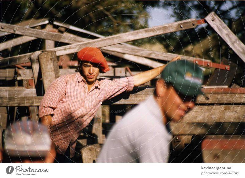Felix de La Pampa Gaucho Cattle Cow Agriculture Cowboy