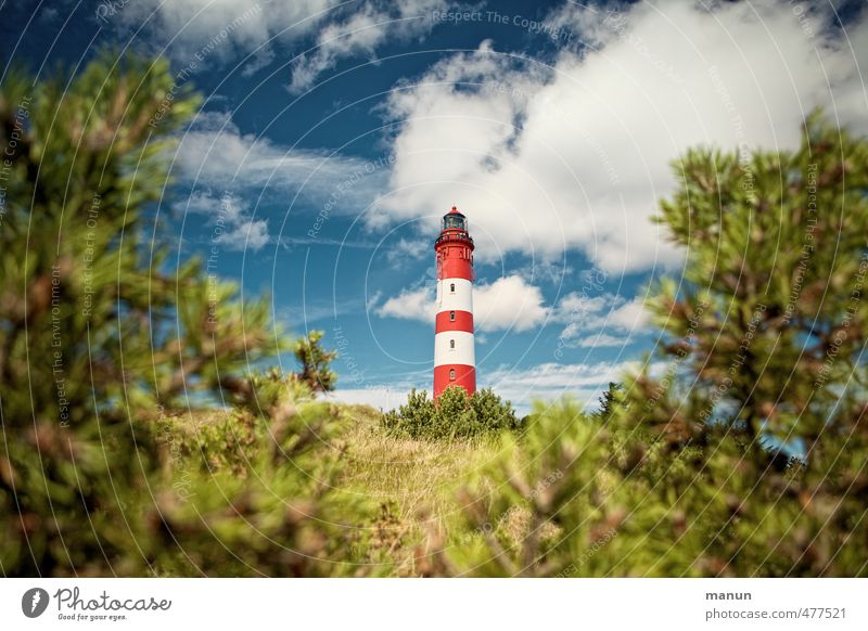 lighthouse Vacation & Travel Tourism Nature Landscape Sky Clouds Tree Bushes Park Hill Coast North Sea Amrum North Sea Islands Port City Manmade structures