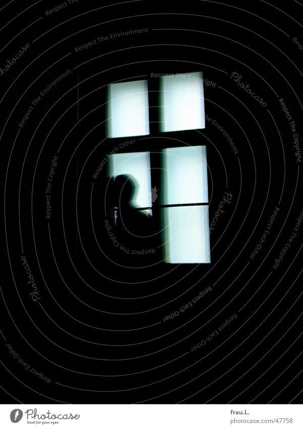 Man Dark Window Fear Art Going Mirror Mysterious Hallway Ghosts & Spectres  Panic Thief Guest Exhibition Mirror image Criminality