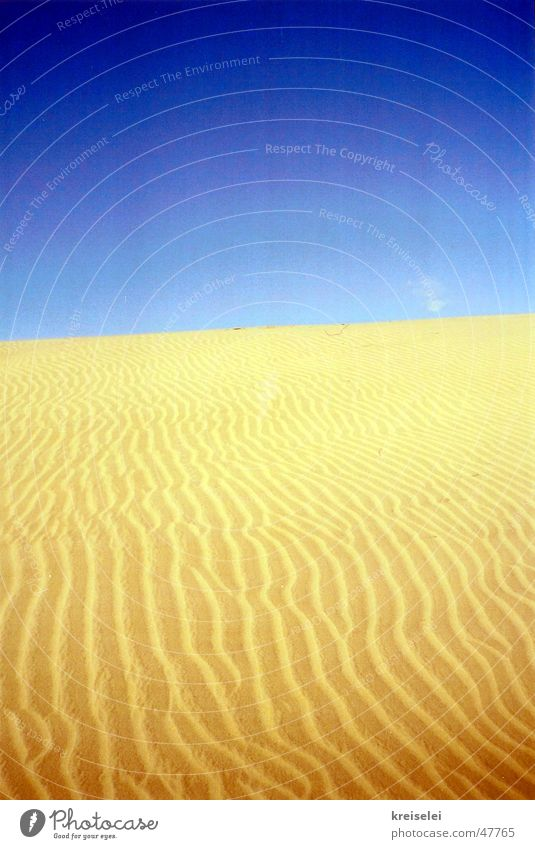 desert yellow Physics Desert Sand Sky Blue Structures and shapes Warmth