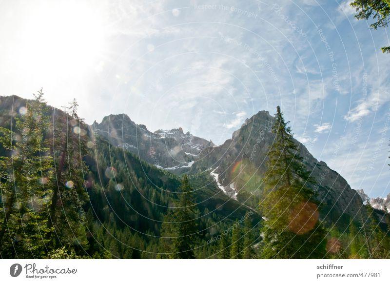 a quarter to twelve Environment Nature Landscape Sun Sunlight Beautiful weather Tree Rock Alps Mountain Peak Snowcapped peak Bright Sexten Dolomites Height