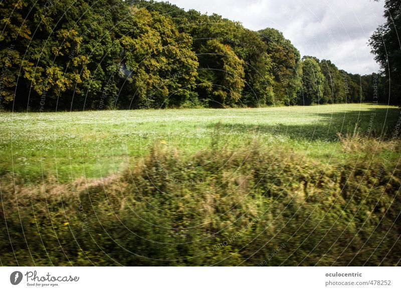 drive by Nature Green Summer Tree Landscape Clouds Forest Warmth Grass Spring Germany Field Idyll Authentic Lawn Peace