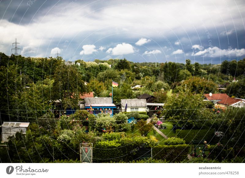Mild Life Nature Landscape Europe Old Nostalgia Moody Dream Garden plot Germany Leisure and hobbies Flag Clouds Sky Tree Hedge Border Green