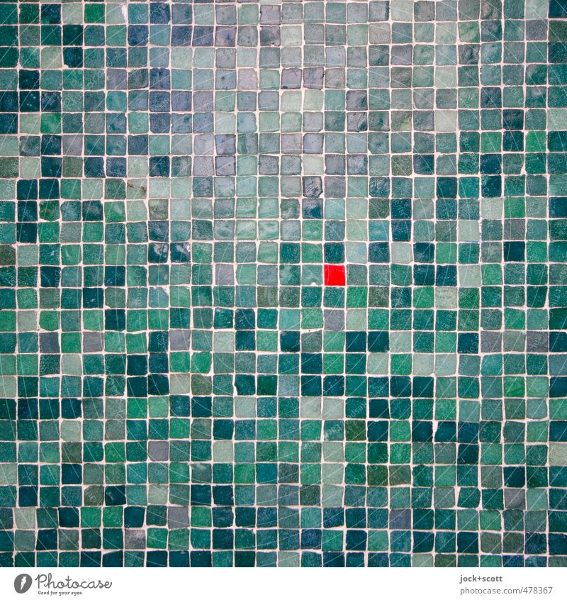 Red in the green Beautiful Green Warmth Wall (building) Wall (barrier) Small Stone Line Facade Glittering Elegant Modern Decoration Esthetic Creativity