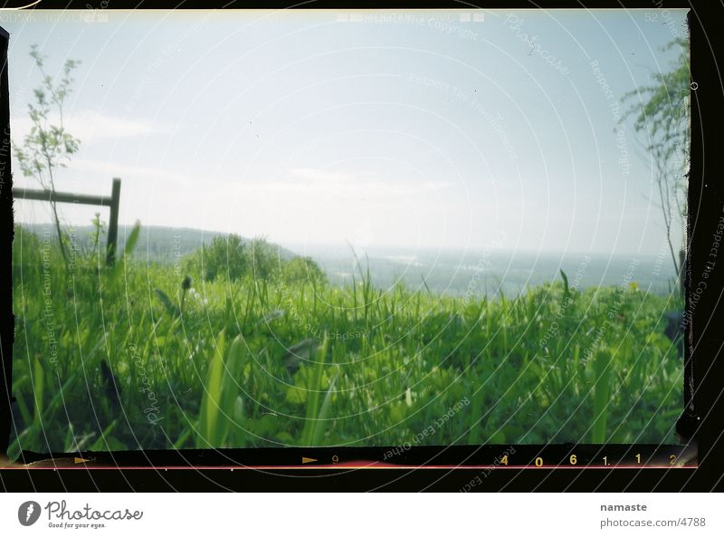 Nature Beautiful Joy Grass Spring Landscape Moody