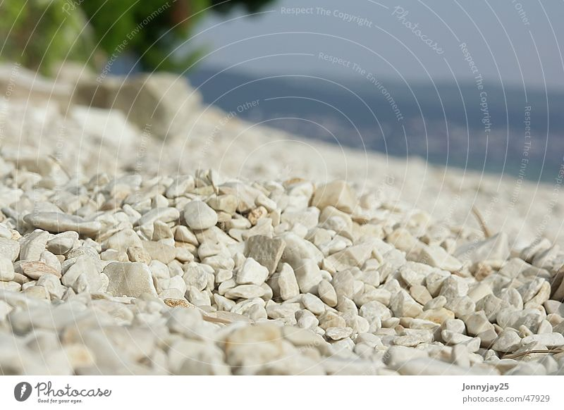 pebble beach Pebble Summer Sun Relaxation Croatia Beige Sunbathing Pebble beach Lie Vacation & Travel Light brown Ocean Rest Leisure and hobbies Beach Tree