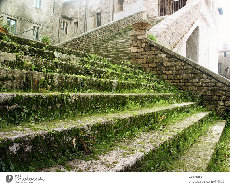Old stair Rhineland-Palatinate Palace Grass Sun Glow Italy Ladder Stairs Stride Stone Castle shine Shadow step