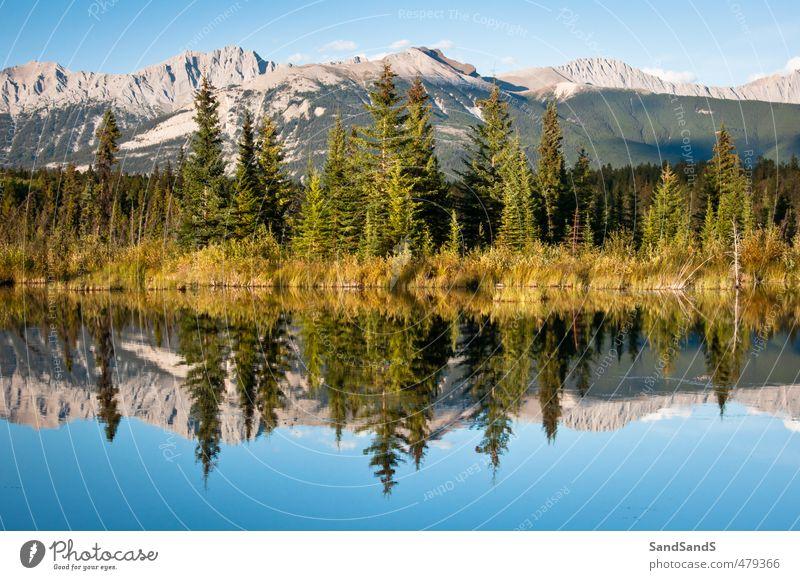 Jasper National Park Beautiful Vacation & Travel Summer Mountain Mirror Nature Landscape Sky Tree Hill Rock Coast Lake Lanes & trails Natural Blue Alberta calm