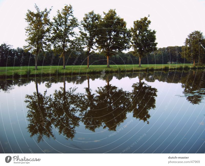 Part 2 NL 04 Tree Reflection Mirror Photography Summer Netherlands Lake Brook Water mirror image River inversely Sky Nature