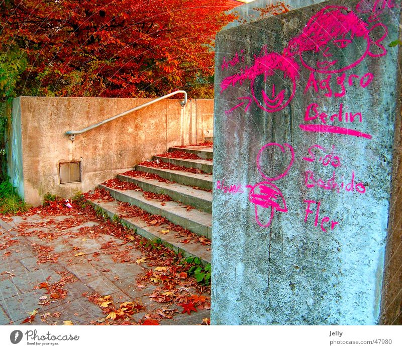 Tree Red Leaf Graffiti Stairs Asphalt Painting (action, work) Handrail Painted
