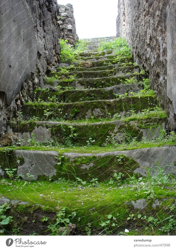 Old Green Grass Building Stairs Ruin Moss Masonry