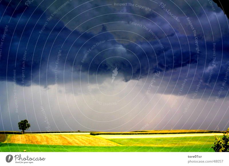 Moment of good and evil Gale Clouds Moody Snapshot Thunder and lightning Weather Earth Graffiti Landscape Nature Sunset